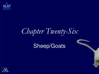 Chapter Twenty-Six