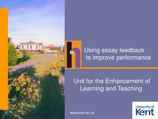 Using essay feedback  to improve performance