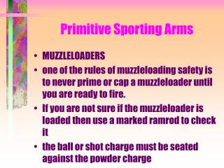 Primitive Sporting Arms