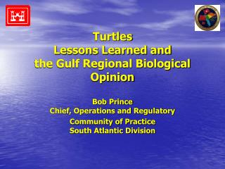 Turtles Lessons Learned and the Gulf Regional Biological Opinion