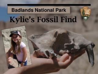 Kylie's  Fossil Find