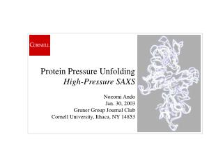 Protein Pressure Unfolding High-Pressure SAXS   Nozomi Ando  Jan. 30, 2003 Gruner Group Journal Club Cornell University,