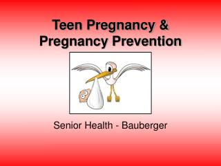 Teen Pregnancy & Pregnancy Prevention