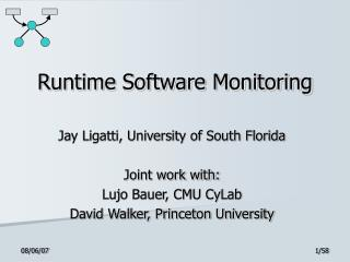 Runtime Software Monitoring