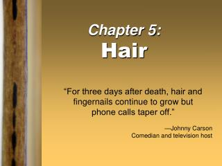 Chapter 5: Hair