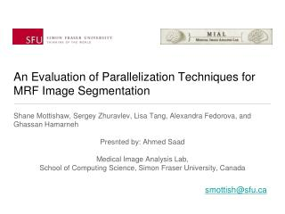 An Evaluation of Parallelization Techniques for MRF Image Segmentation