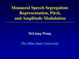 Monaural Speech Segregation: Representation, Pitch, and Amplitude Modulation