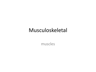 Muscle Tissue Chapter 4