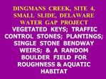 DINGMANS  CREEK,  SITE  4,  SMALL  SLIDE,  DELAWARE  WATER  GAP  PROJECT  VEGETATED  KEYS;  TRAFFIC  CONTROL  STONES;  P