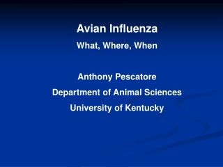 Avian Influenza What, Where, When Anthony Pescatore Department of Animal Sciences University of Kentucky