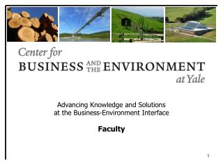 Advancing Knowledge and Solutions  at the Business-Environment Interface Faculty