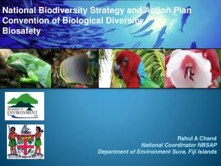 National Biodiversity Strategy and Action Plan Convention of Biological Diversity Biosafety
