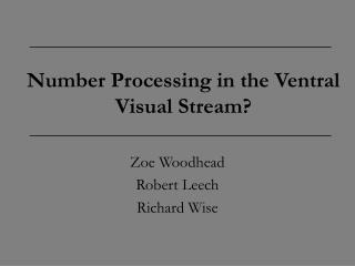 Number Processing in the Ventral Visual Stream?