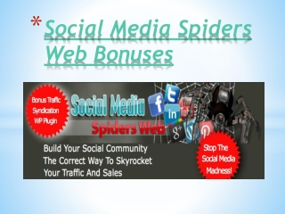 Social Media Spiders Web Review