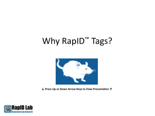 Why RapID Tags?