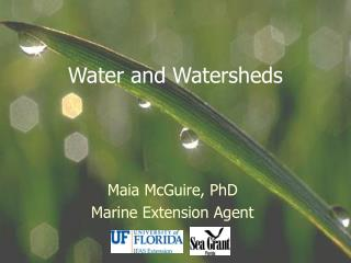 Water and Watersheds