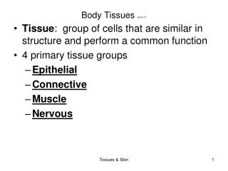 Body Tissues  rev 9-11