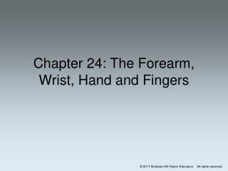 Chapter 24: The Forearm, Wrist, Hand and Fingers