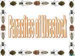 Parasites of Livestock
