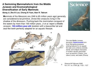 A Swimming Mammaliaform from the Middle Jurassic and Ecomorphological Diversification of Early Mammals  Qiang Ji, Zhe-Xi