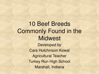 10 Beef Breeds Commonly Found in the Midwest