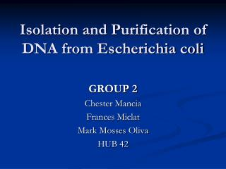 Isolation and Purification of DNA from Escherichia coli