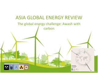 ASIA GLOBAL ENERGY REVIEW-The global energy challenge: Awash