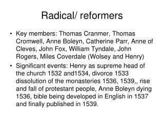 Radical/ reformers