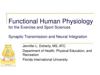 Functional Human Physiology for the Exercise and Sport Sciences  Synaptic Transmission and Neural Integration