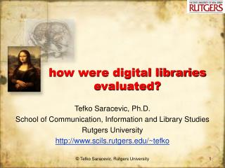 how were digital libraries evaluated?