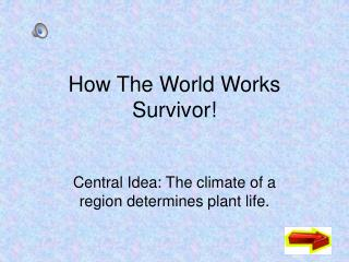 How The World Works Survivor!