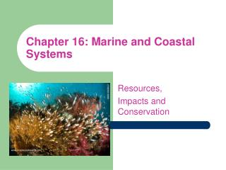 Chapter 16: Marine and Coastal Systems