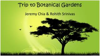 Trip to Botanical Gardens