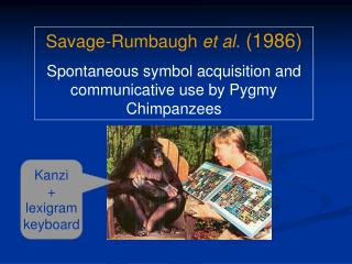 Savage-Rumbaugh  et al.  (1986) Spontaneous symbol acquisition and communicative use by Pygmy Chimpanzees