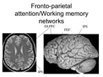 Fronto-parietal attention