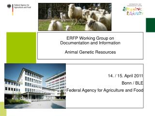 ERFP Working Group on Documentation and Information Animal Genetic Resources