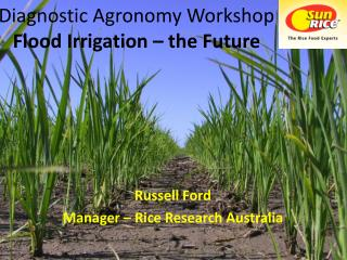 Diagnostic Agronomy Workshop Flood Irrigation   the Future
