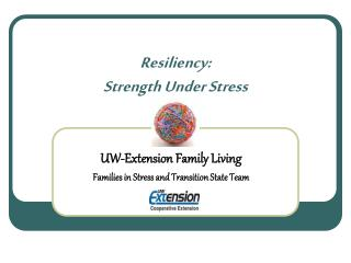 Resiliency: Strength Under Stress