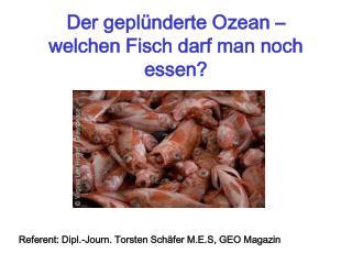 Der geplünderte Ozean – welchen Fisch darf man noch essen?