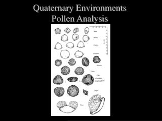 Quaternary Environments Pollen Analysis