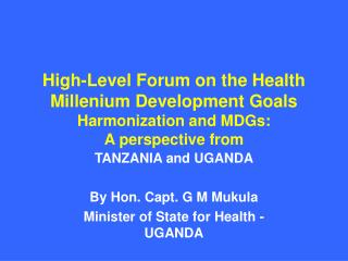 High-Level Forum on the Health Millenium Development Goals Harmonization and MDGs: A perspective from