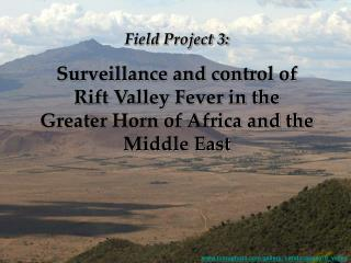 Field Project 3: Surveillance and control of Rift Valley Fever in the Greater Horn of Africa and the Middle East