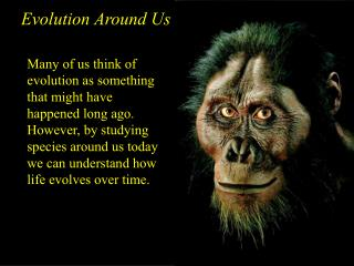 Evolution Around Us