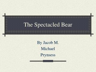 The Spectacled Bear