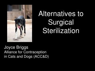 Alternatives to Surgical Sterilization
