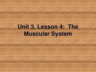 Unit 3, Lesson 4:  The Muscular System