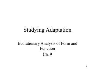 Studying Adaptation