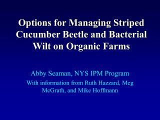 Options for Managing Striped Cucumber Beetle and Bacterial Wilt on Organic Farms