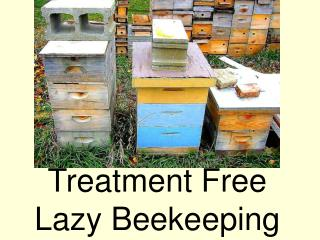 Treatment Free Lazy Beekeeping