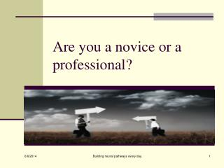 Are you a novice or a professional?
